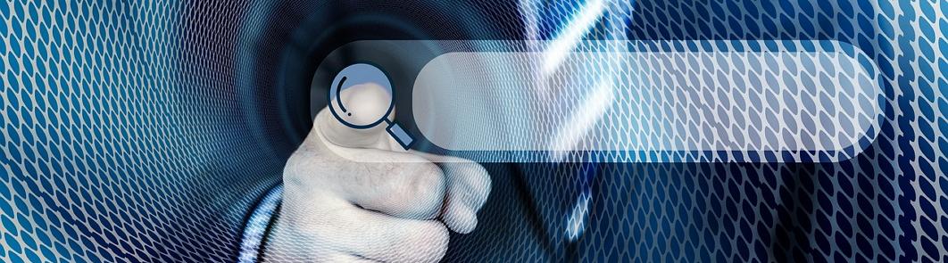 проверить в реестре дисквалифицированных лиц